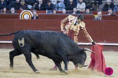 Manzanares, baja, deja la reaparición de Ureña en mano a mano con Ponce