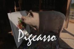 Pigcasso, del matadero a vender cuadros por 4.000 euros
