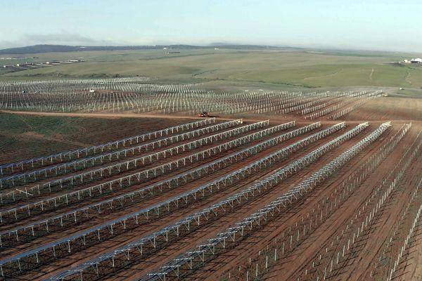 Planta fotovoltaica de Núñez de Balboa, en Usagre (Badajoz).