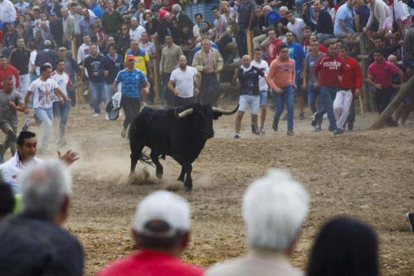 Asistentes al Toro de la Vega durante los festejos de septiembre de...