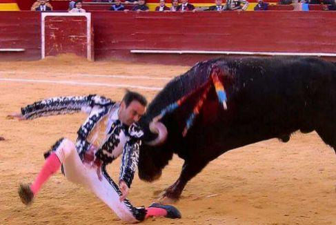 Enrique Ponce, herido y gravemente lesionado en Valencia