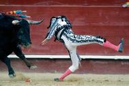 El diestro Enrique Ponce ha resultado cogido durante la faena de muleta al quinto toro de la corrida de hoy de la feria de Fallas de Valencia, por lo que ha ingresado en la enfermería sin llegar a entrar a matar.