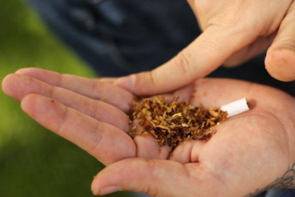 Cannabis: el riesgo de la psicosis