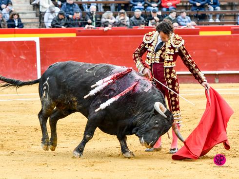 Extraordinario muletazo de Finito en Valencia
