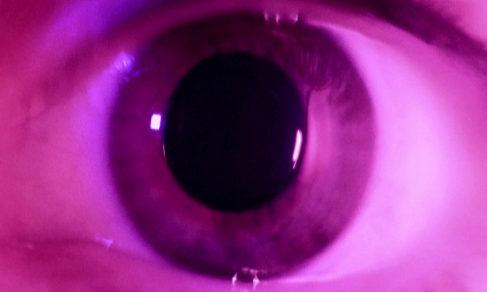 Una película que cambia según las ondas cerebrales del espectador