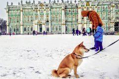 'Mosqueovitas' en Putingrado