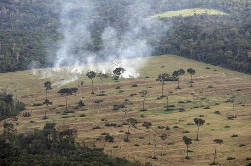 Terrenos quemados en la Amazonía brasileña para extender los cultivos de soja.