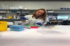 Biola Javierre, en su laboratorio del Instituto de Investigación contra la Leucemia Josep Carreras (IJC).