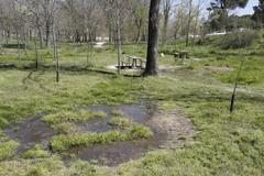 Fugas del lago  inundan el parque y  la depuradora