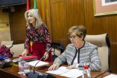 La consejera de Cultura, Patricia del Pozo, en una comisión parlamentaria.