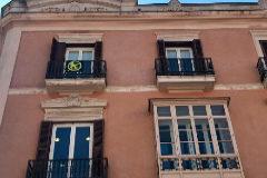 Més sustituyó ayer el lazo amarillo de su balcón en el Parlament por un 'sinsajo'.