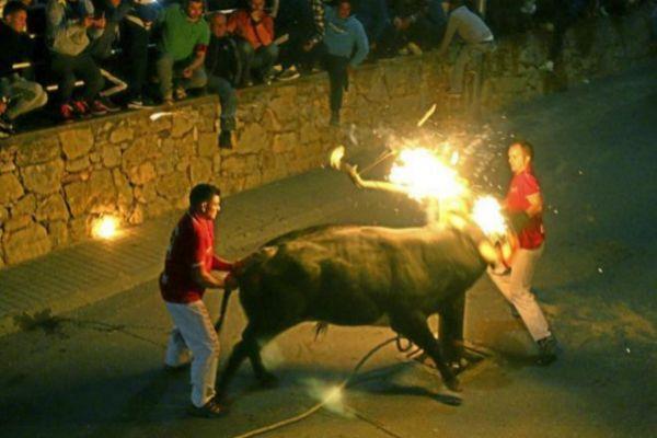 Imagen de archivo de una celebración de un 'correbous' en una localidad tarraconense.