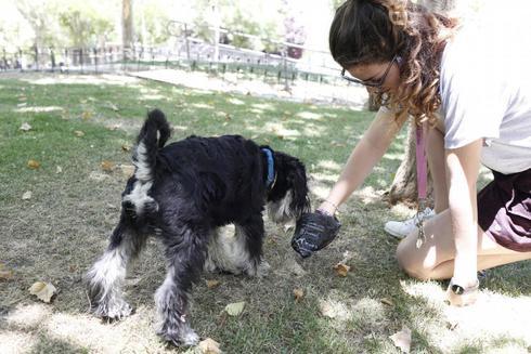 Una mujer recoge la caca de su perro en un parque.