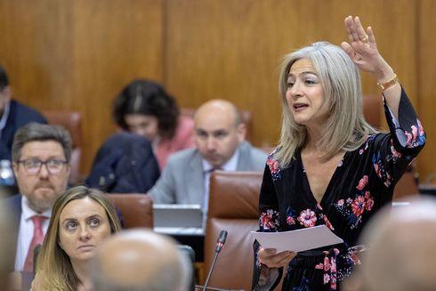 La consejera Marifrán Carazo, sentada, y la de Cultura, Patricia del Pozo, durante su intervención en el pleno del Parlamento este jueves.