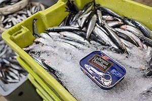 El viaje sostenible de la anchoa de Lidl
