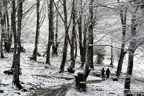 Dos personas caminan entre la nieve en el puerto de Belate, Navarra