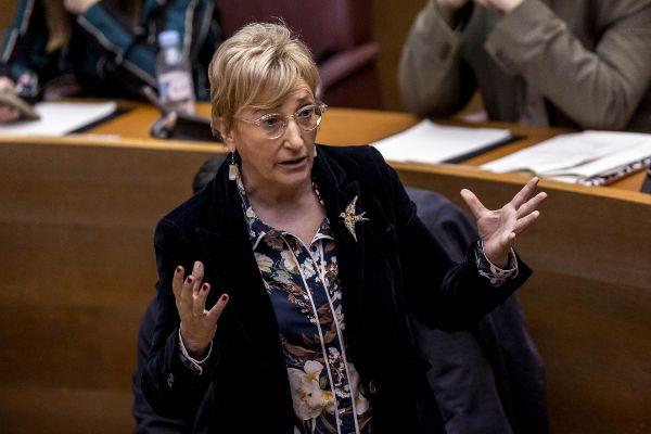 La consellera de Sanidad, Ana Barceló, en las Cortes.