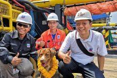 El agónico rescate de la perrita que nadaba a 217 kilómetros de la costa