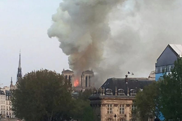 La Catedral de Notre Dame, esta tarde