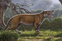 Simbakubwa, el nuevo carnívoro gigante que dejaron escondido dentro de un cajón