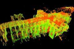 Imagen de la planta de Notre Dame a partir del modelado 3D de Andrew Tallon.