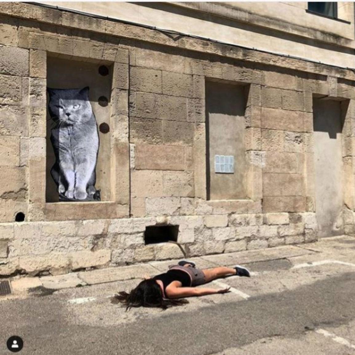 'Stef muere bajo un gato grande'. Arles, Francia.