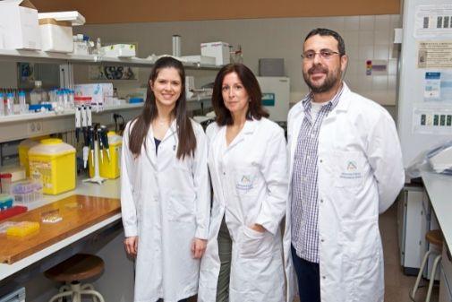 Paula sáez, María José Gómez y Alejandro Romero son los autores de este estudio.