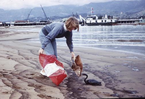 Una mujer recoge a un cormorán durante la limpieza de una playa de...