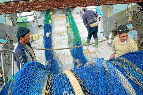 Un arrastrero recogiendo sus redes en el puerto de Palma.