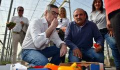 Ciudadanos exige la dimisión de Rosa María Mateo