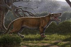 Ilustración del aspecto que tendría el carnívoro descubierto.