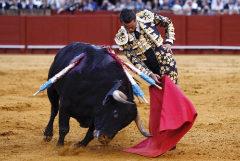 Hermoso trincherazo de José María Manzanares al notable quinto toro, al que le cortó una oreja