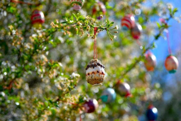 Huevos de Pascua decorados cuelgan de un árbol