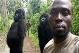 El simpático posado de dos gorilas que revoluciona las redes sociales