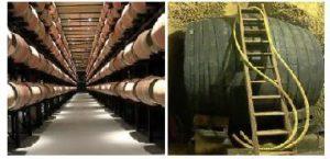 Las bodegas españolas: tradición e innovación