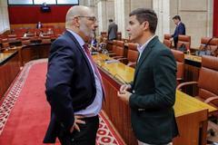 El portavoz parlamentario de Vox, Alejandro Hernández, con su homólogo de Ciudadanos, Sergio Romero.
