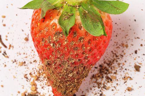 Las fresas, el alimento más 'sucio' de la cesta de la compra