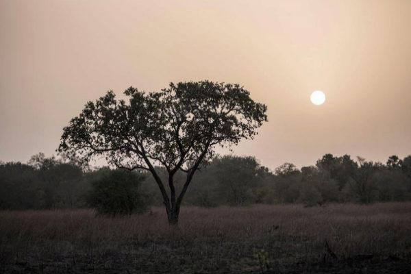 El sol sale sobre el Parque Nacional Pendjari, en Benin, cerca de la...