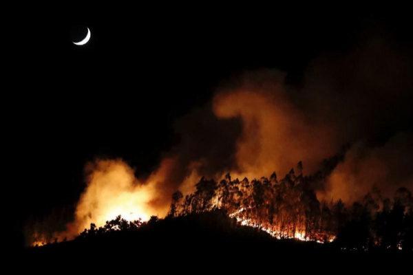 GRAF6483. <HIT>OVIEDO</HIT>.- El Gobierno asturiano ha elevado el nivel de alerta del Plan de Incendios Forestales (INFOPA) por el fuego forestal declarado este miércoles en la sierra de Sorella, que afecta a los concejos de Grado, Candamo y Salas, ante la posibilidad de que su evolución pueda poner en riesgo alguna construcción.