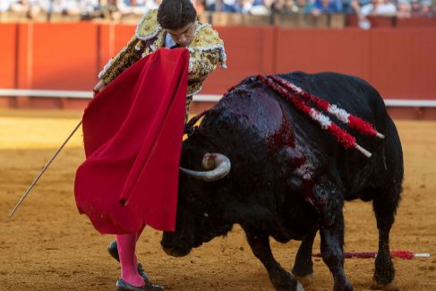 Pablo Aguado, el nuevo rey de Sevilla: cuatro orejas,  Puerta del Príncipe y una faena para la historia