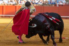 Pablo Aguado, el nuevo rey de Sevilla: 4 orejas y una faena para la historia