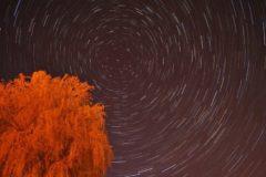 Movimiento aparente de las estrellas en torno a la polar