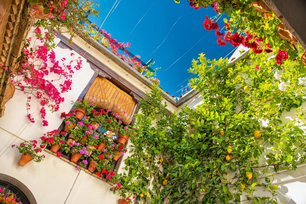El famoso duende andaluz está presente en muchos lugares....