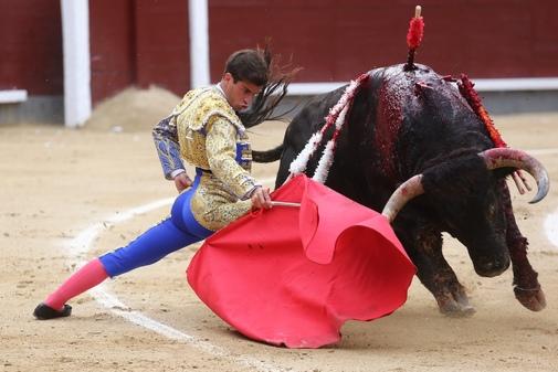 Muletazo genuflexo de Rubén Pinar al toro 'Botero' de Dolores Aguirre, en la pasada Feria de San Isidro