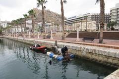 Los buceadores, durante los trabajos en el puerto de Alicante