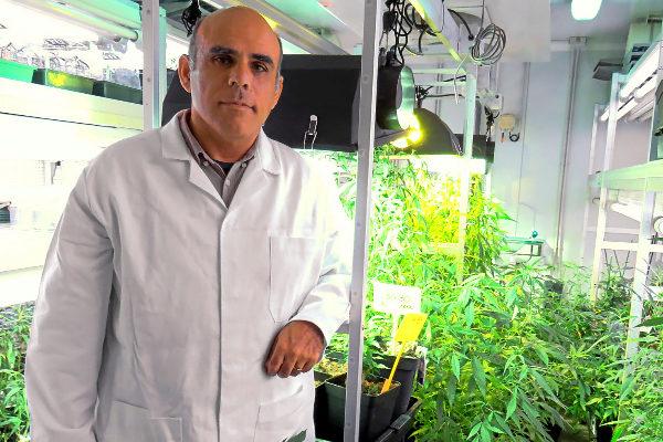 cuando-el-cannabis-puede-mejorar-tu-vida