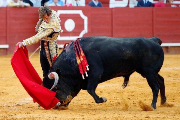El Juli indulta a 'Corchero' de Garcigrande en Jerez