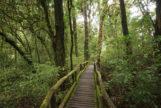 El factor humano, clave en la hoja de ruta para cuidar el planeta