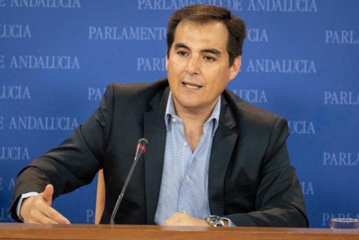 El portavoz parlamentario del PP Andaluz, José Antonio Nieto.