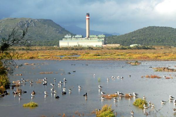 La central térmica de Es Murterar, que empezará su desmantelamiento el próximo 1 de enero de 2020.